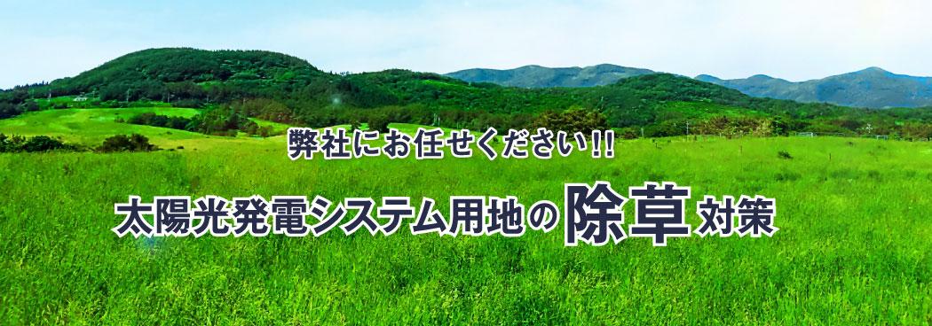 太陽光発電システム用地の除草対策